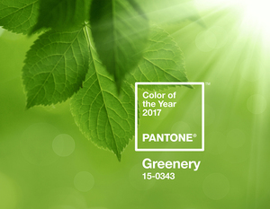 Pantone announced its 2017 Color of the Year on Dec. 8. The color,